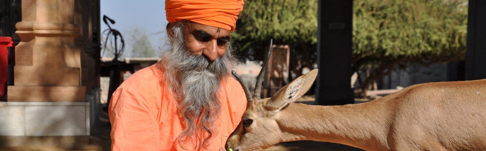 Bishnoï avec antilope