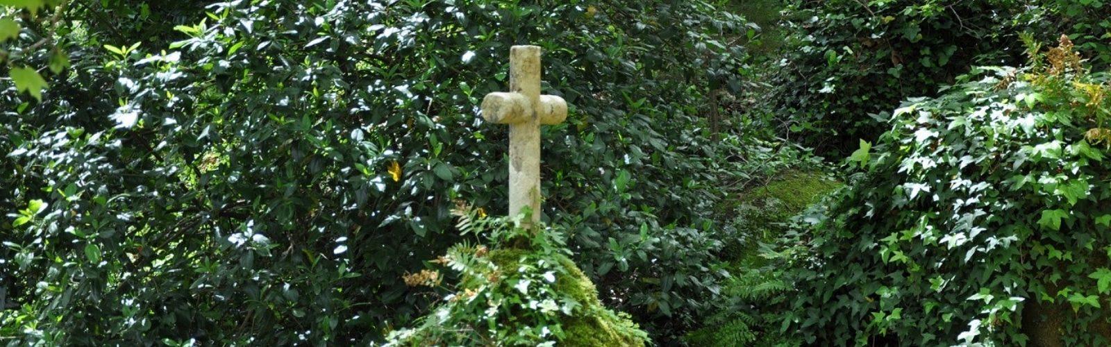croix dans la forêt